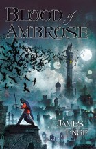 Blood of Ambrose by James Enge