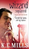 Wizard Squared by Karen Miller
